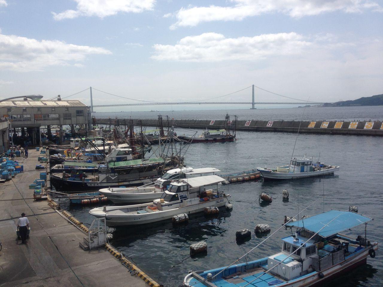 京都から世界へ -藤田功博の京都日記-明石浦漁港で「漁港の違い」を知るコメントトラックバック