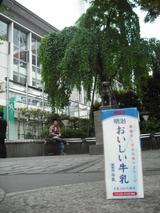 忠犬ハチ公前で記念写真