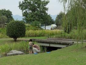 向こうに見えるのが江津湖です。
