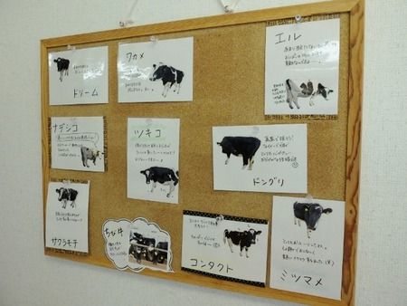 想いやりファームの牛さんたち