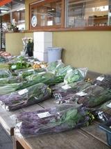 新鮮な野菜も売ってます