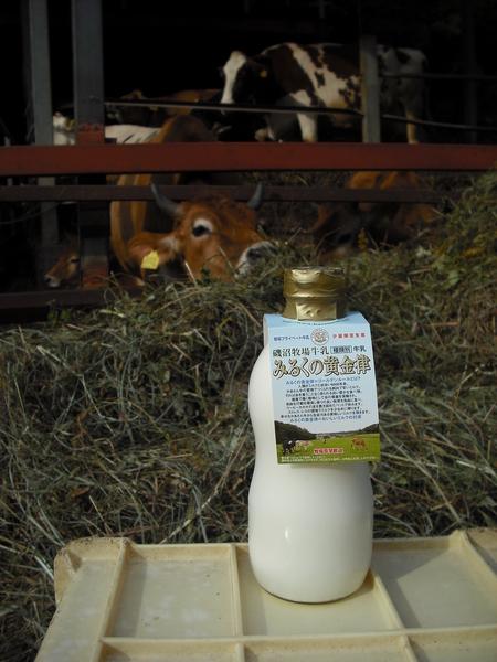 磯沼牧場の牛乳「みるくの黄金律」