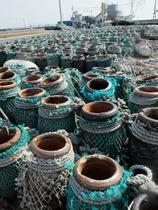 泊港には蛸壺が。