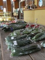地元の野菜も売ってます