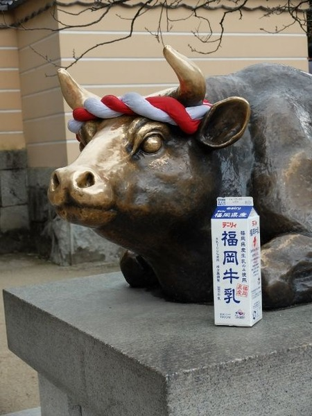 太宰府天満宮で福岡牛乳を撮ってみた。