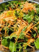 江戸東京野菜サラダ