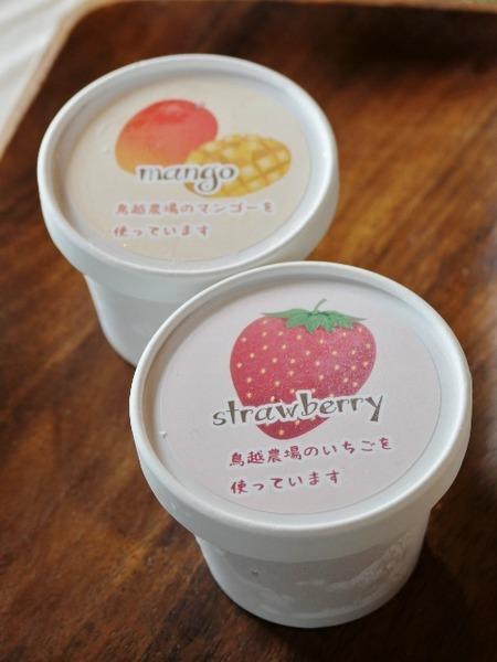 04aマンゴー&イチゴ