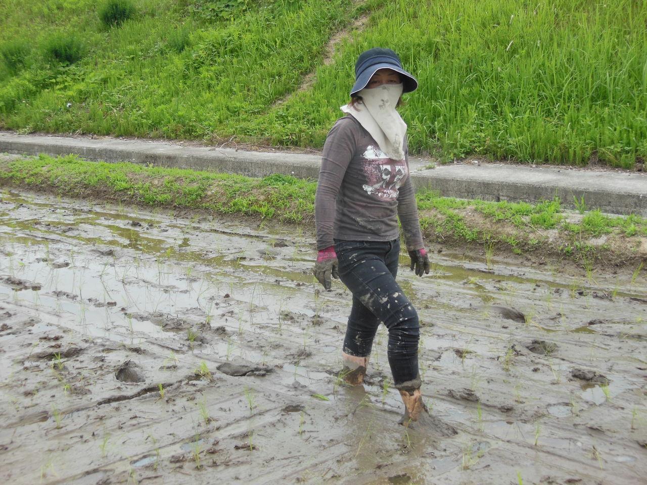 農作業DAY : 不動産リサーチ ...