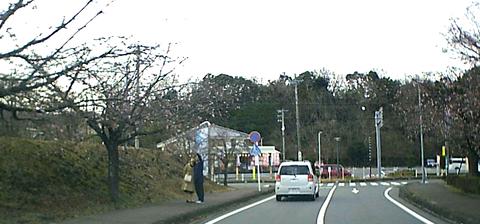 20200215kawazu
