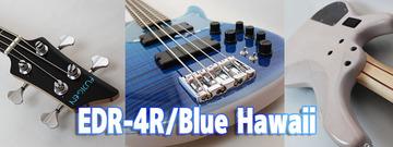 EDR-4R_Blue_Hawaii