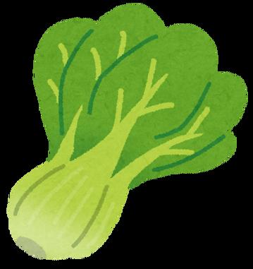 vegetable_komatsuna