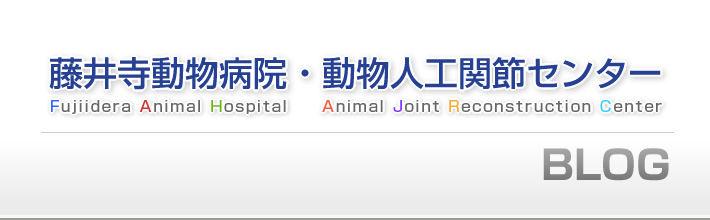 藤井寺動物病院/動物人工関節センター オフィシャルブログ