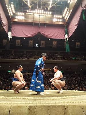 大相撲秋場所と横綱の引退