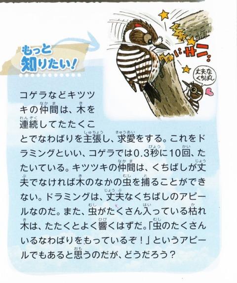 nakigoe-kansei_0004 (671x800)