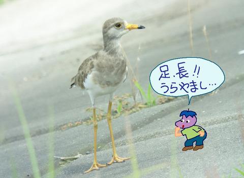 keri-ashi