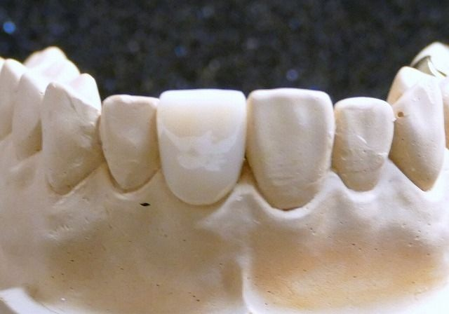 P1030506 (2)