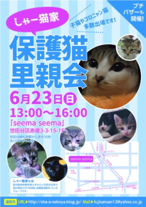 satooyakai_chirashi201906