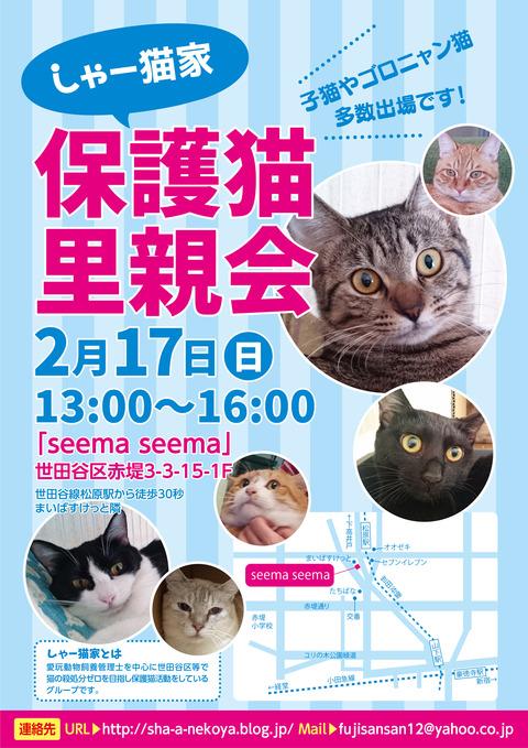 satooyakai_chirashi201902