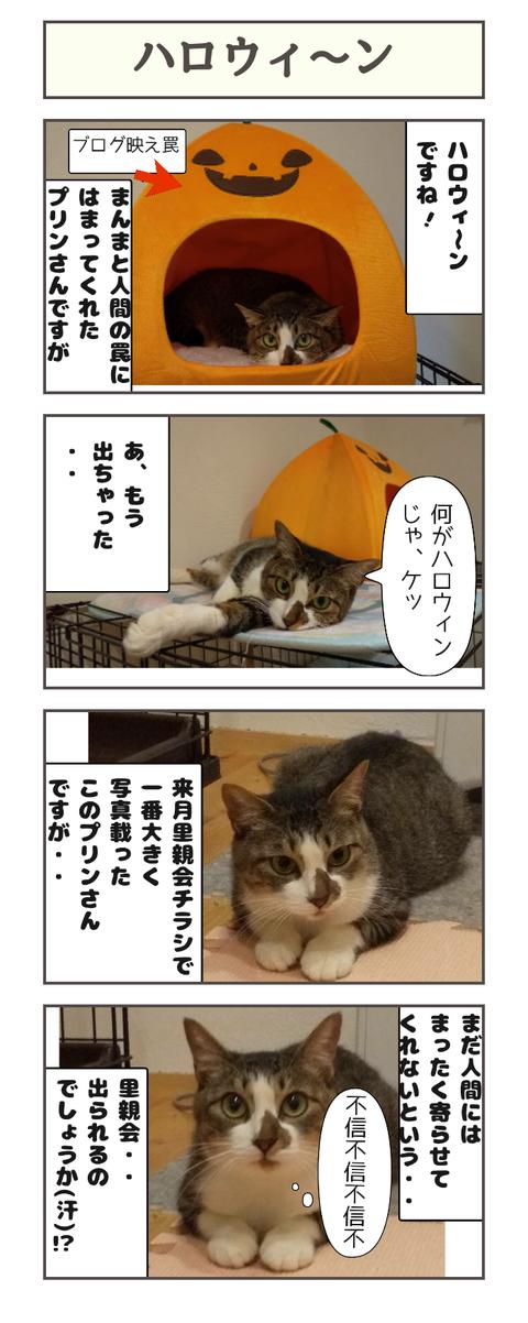 ハロウィ〜ン20191031130526
