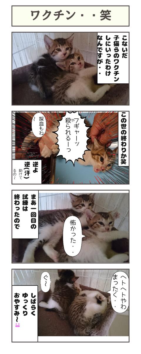 ワクチン・・笑20190922041533