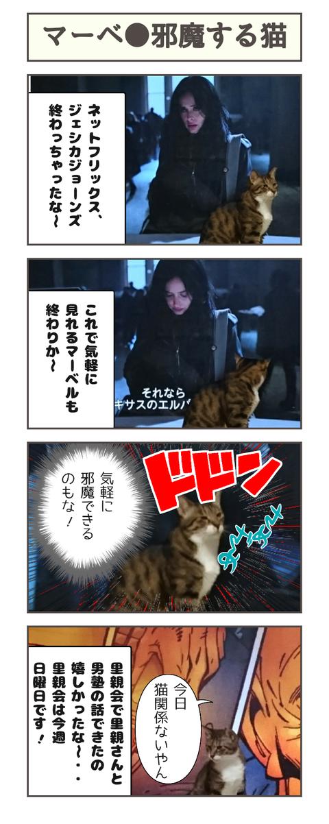 マーベ●邪魔する猫20190618114507
