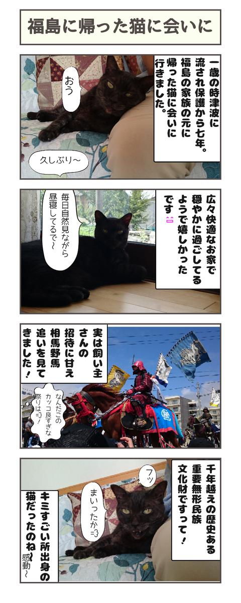 福島に帰った猫