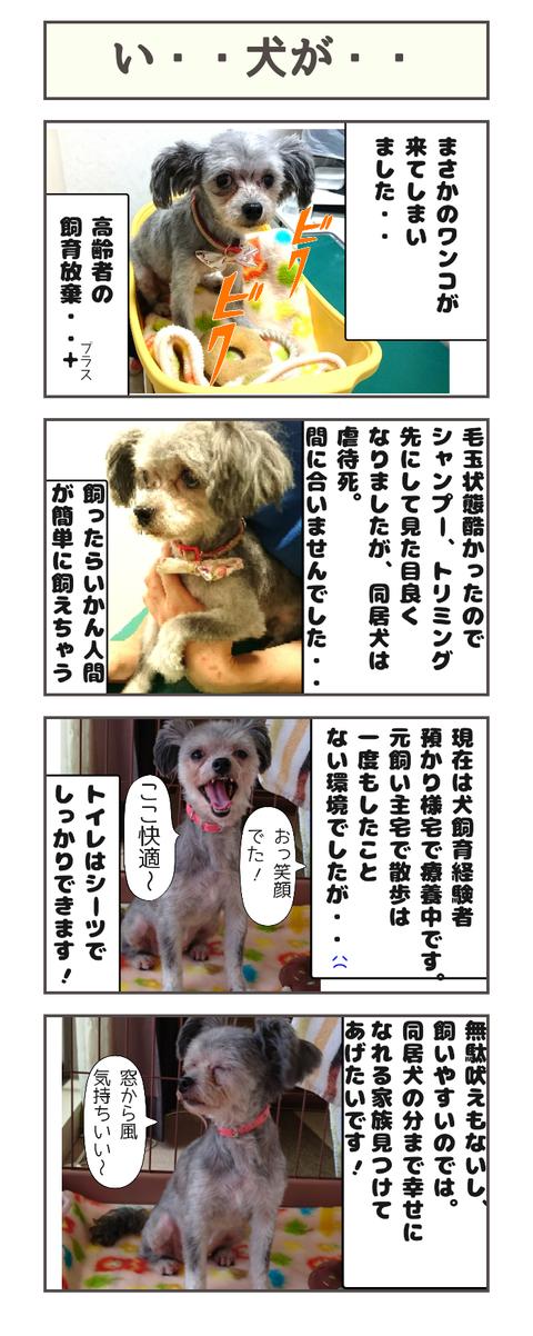 い・・犬が・・