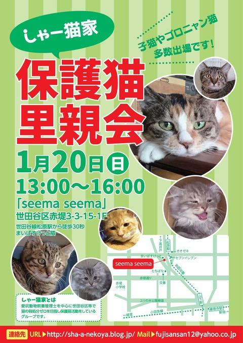 satooyakai_chirashi201901-001
