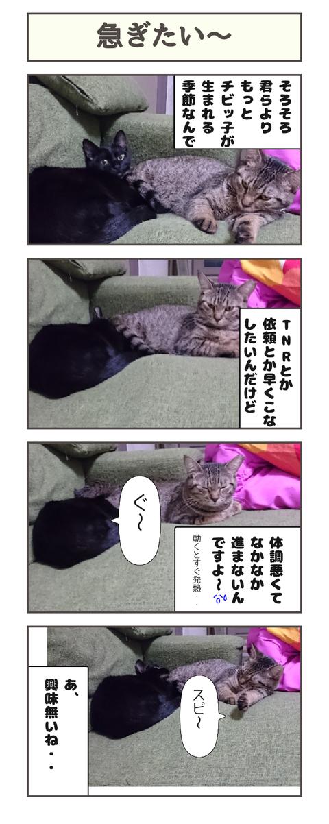 急ぎたい〜20190320102058