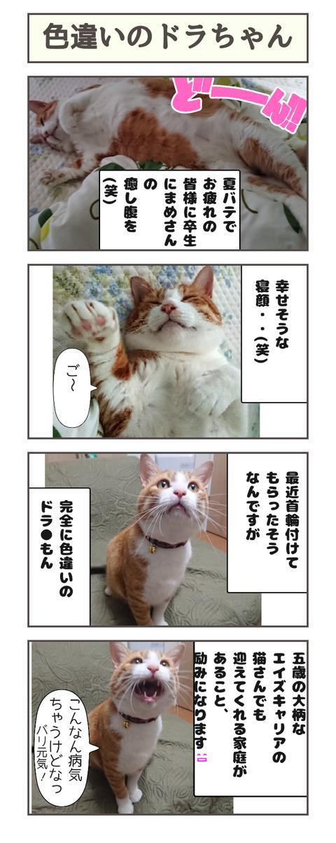 色違いのドラちゃん20190824132930