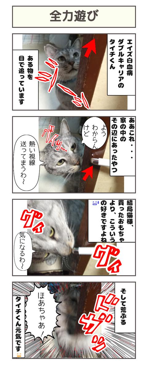 全力遊び20200331143318