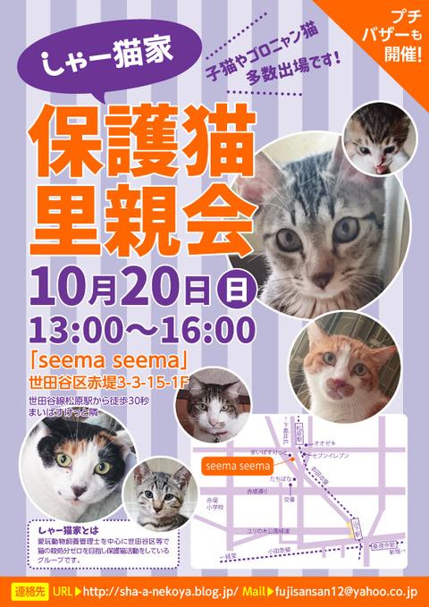 satooyakai_chirashi201910
