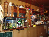 居酒屋のカウンター