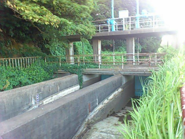 大利根用水幹線用水路からゆく~...