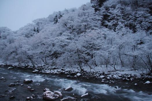 daiyagawa