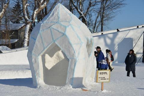 20200208氷雪まつり462