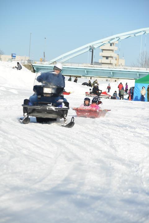 20200208氷雪まつり341