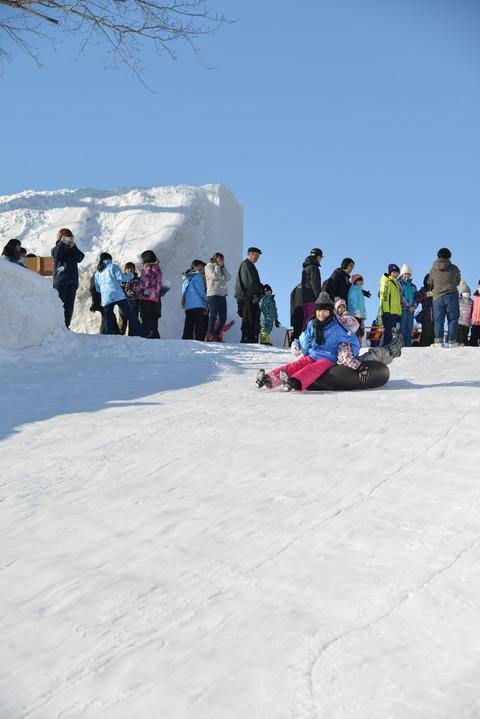20200208氷雪まつり387