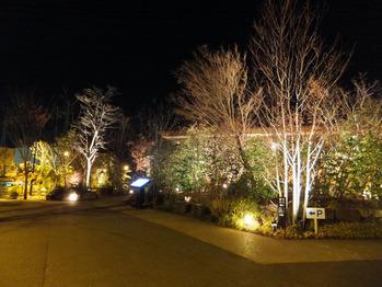 梅の花町田店