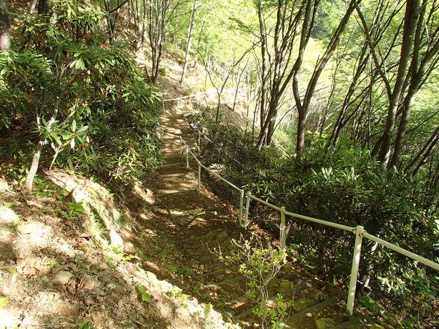 0028 登山道