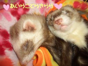 お姉ちゃん&お兄ちゃん
