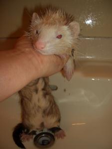 きらら初お風呂。