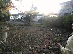 Image287 (2)