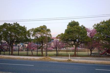 1-久原公園DSC07944
