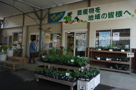 5-JAせいひ ふれあい市DSC00132