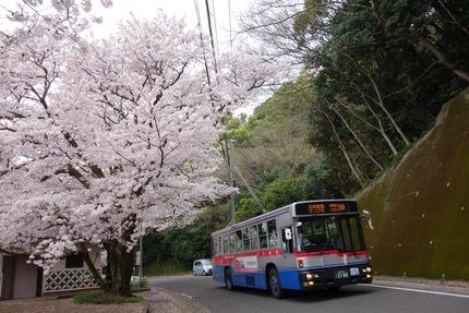 3-和三郎憩いの広場DSC04493