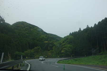 2-雲仙 仁田峠 ミヤマキリシマDSC06735