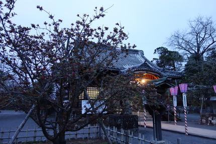 9−大村神社DSC04977