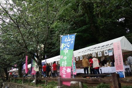 4-大村公園 花菖蒲DSC07523