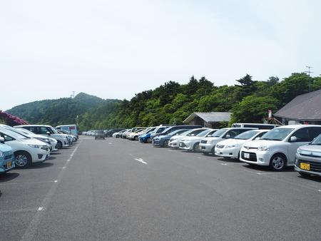 5-雲仙市仁田峠 ミヤマキリシマP5231634